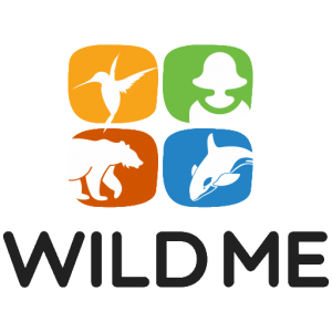 wild me conservation